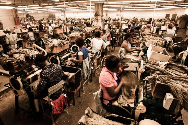 Handmade_cigar_production,_process._Shopfloor_of_Tabacalera_de_Garcia_Factory._Casa_de_Campo,_La_Romana,_Dominican_Republic.jpg